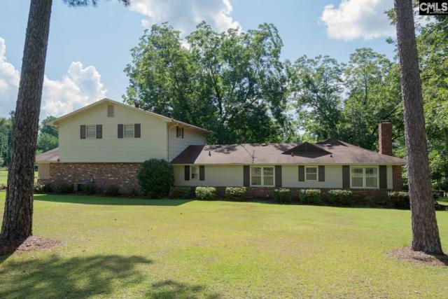 732 Koon Road, Irmo, SC 29063 (MLS #430767) :: Home Advantage Realty, LLC