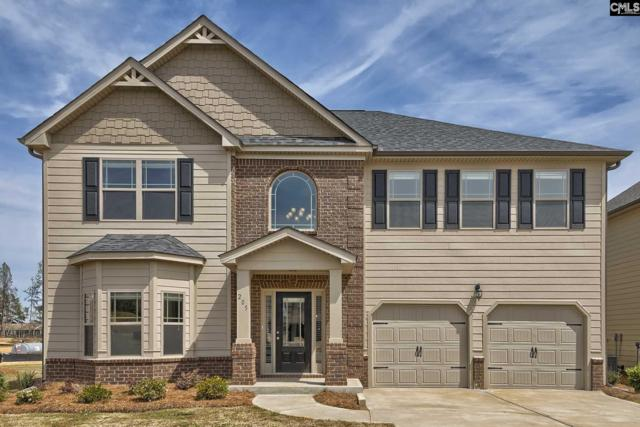 205 Village Green Way #113, Lexington, SC 29072 (MLS #437205) :: Home Advantage Realty, LLC