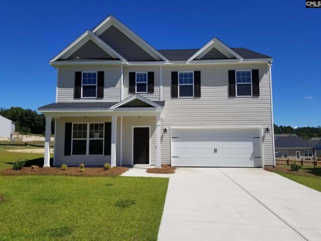 164 Sunny View Lane, Lexington, SC 29073 (MLS #437723) :: Home Advantage Realty, LLC