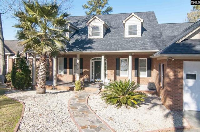 432 Lookover Pointe Drive, Chapin, SC 29036 (MLS #438927) :: EXIT Real Estate Consultants