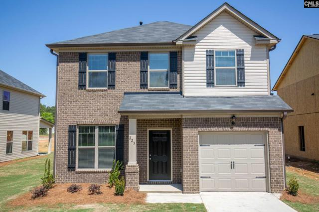 223 Bickley View Court #27, Chapin, SC 29036 (MLS #439383) :: Home Advantage Realty, LLC