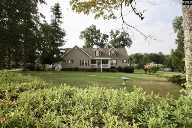 186 Hunter Drive, Chapin, SC 29036 (MLS #440848) :: EXIT Real Estate Consultants