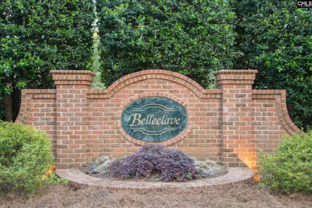122 Belleford Ridge Road, Columbia, SC 29223 (MLS #444062) :: EXIT Real Estate Consultants