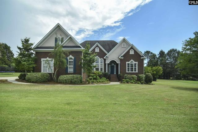 241 Bent Oak Drive, Chapin, SC 29036 (MLS #444380) :: EXIT Real Estate Consultants