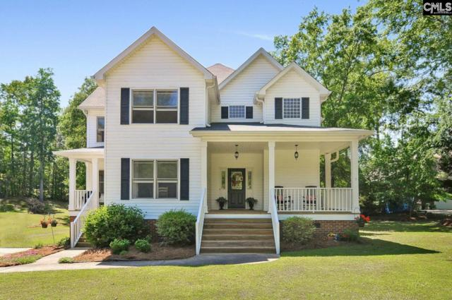 446 Smallwood Drive, Chapin, SC 29036 (MLS #445964) :: EXIT Real Estate Consultants