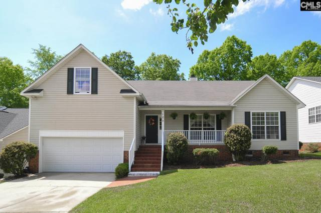 125 Kings Creek Road, Irmo, SC 29063 (MLS #446267) :: The Olivia Cooley Group at Keller Williams Realty