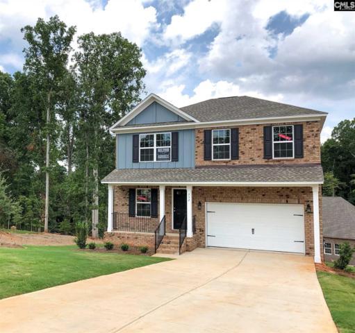 332 Berlandier Lane, Columbia, SC 29212 (MLS #447063) :: EXIT Real Estate Consultants