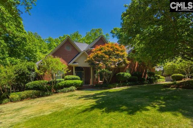 201 Misty Oaks Ct, Lexington, SC 29072 (MLS #447118) :: EXIT Real Estate Consultants