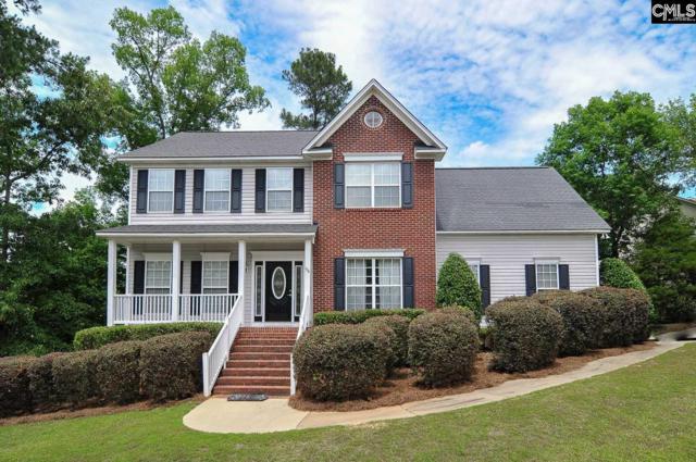 96 Hollenbeck Road, Irmo, SC 29063 (MLS #448454) :: EXIT Real Estate Consultants