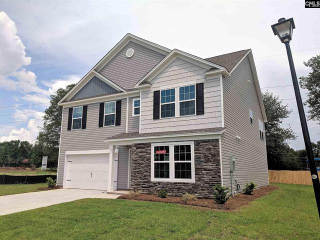 111 Elsoma Drive, Chapin, SC 29036 (MLS #449677) :: EXIT Real Estate Consultants