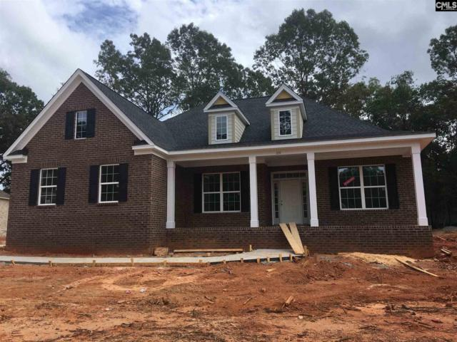 231 Hilton View Court, Chapin, SC 29036 (MLS #449890) :: EXIT Real Estate Consultants