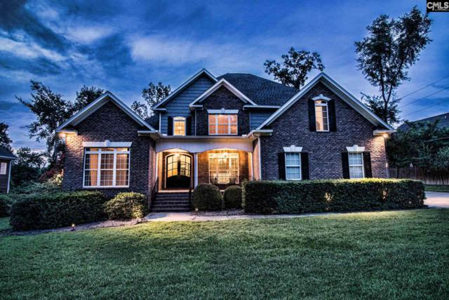 310 Forty Love Point, Chapin, SC 29036 (MLS #451566) :: Home Advantage Realty, LLC