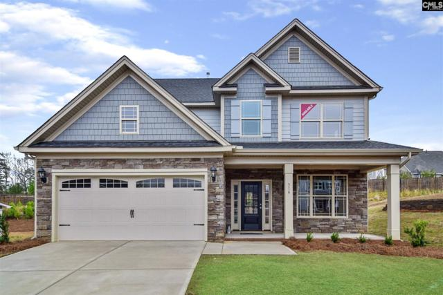 316 Geer Court, Lexington, SC 29072 (MLS #452601) :: The Olivia Cooley Group at Keller Williams Realty
