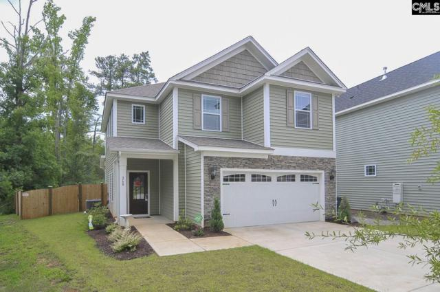 260 Cherokee Pond Court, Lexington, SC 29072 (MLS #452844) :: Home Advantage Realty, LLC