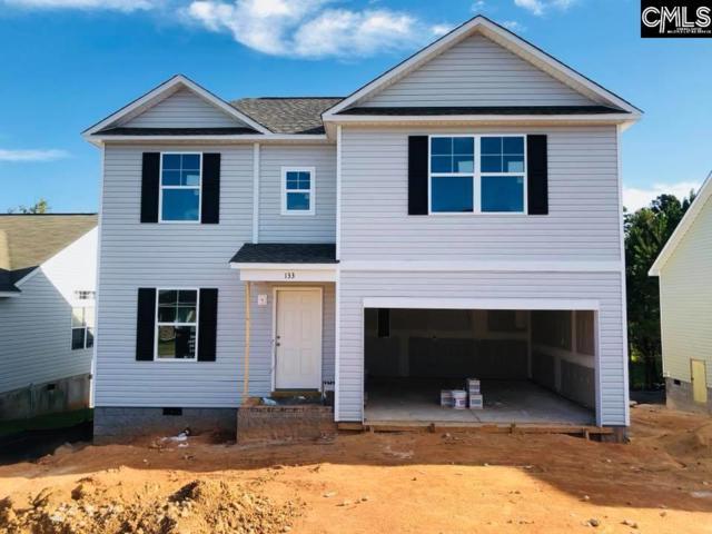 133 Cascade Drive, Lexington, SC 29072 (MLS #453221) :: EXIT Real Estate Consultants