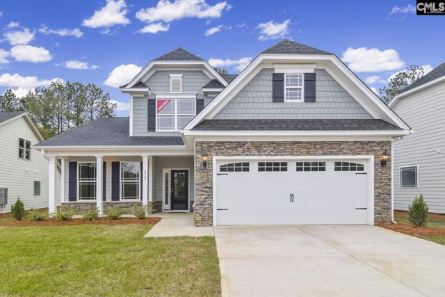 212 Laurelbrook Drive, Chapin, SC 29036 (MLS #453839) :: EXIT Real Estate Consultants