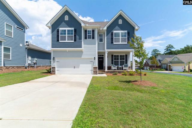 64 Downing Circle, Gilbert, SC 29054 (MLS #453875) :: EXIT Real Estate Consultants