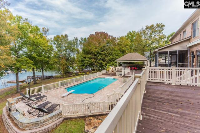 629 Harborview Point, Chapin, SC 29036 (MLS #453991) :: The Olivia Cooley Group at Keller Williams Realty