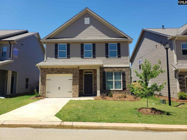 235 Bickley View Court, Chapin, SC 29036 (MLS #454876) :: EXIT Real Estate Consultants