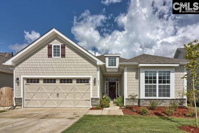656 Scarlet Baby Drive, Blythewood, SC 29016 (MLS #455713) :: Home Advantage Realty, LLC