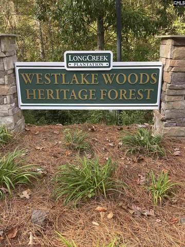 308 Longcreek Plantation Dr, Blythewood, SC 29016 (MLS #456061) :: The Meade Team