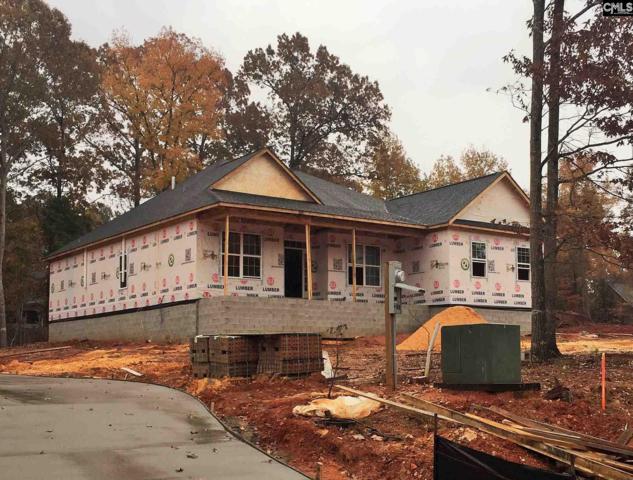 239 Hilton View Court, Chapin, SC 29036 (MLS #458191) :: Home Advantage Realty, LLC