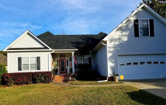 216 Spring Tyme Court, Lexington, SC 29073 (MLS #459068) :: EXIT Real Estate Consultants