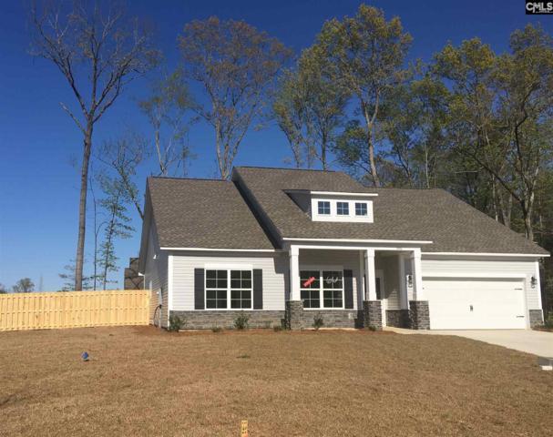 306 Saucer Way, Chapin, SC 29036 (MLS #460404) :: Loveless & Yarborough Real Estate