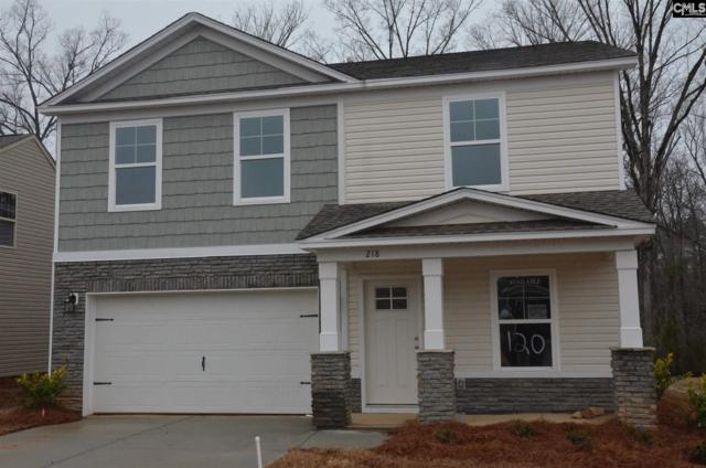 218 St. Charles Place, Chapin, SC 29036 (MLS #460449) :: EXIT Real Estate Consultants