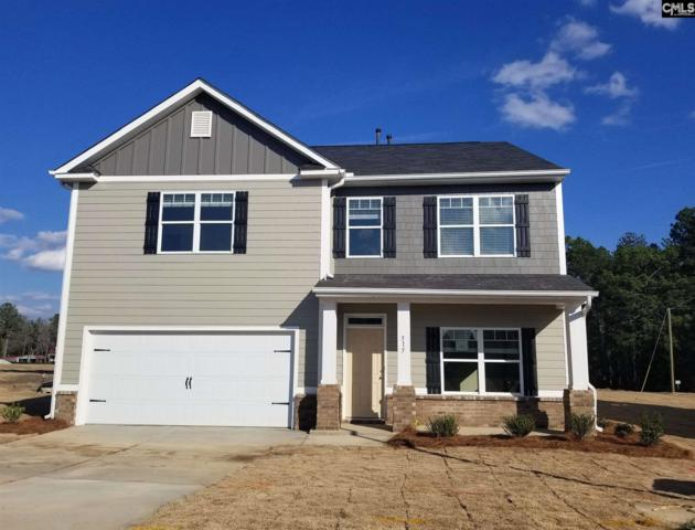 515 Grant Park Court, Lexington, SC 29072 (MLS #460811) :: The Olivia Cooley Group at Keller Williams Realty