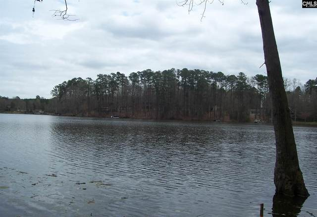 205 Tortoise Trail Lot 10, Batesburg, SC 29006 (MLS #461304) :: Resource Realty Group