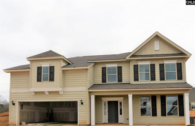 1262 Portrait Hill Drive, Chapin, SC 29036 (MLS #461704) :: The Meade Team