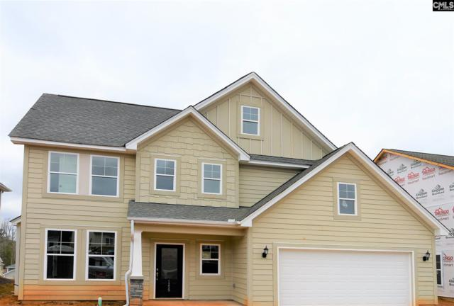 1259 Portrait Hill Drive, Chapin, SC 29036 (MLS #461706) :: The Meade Team