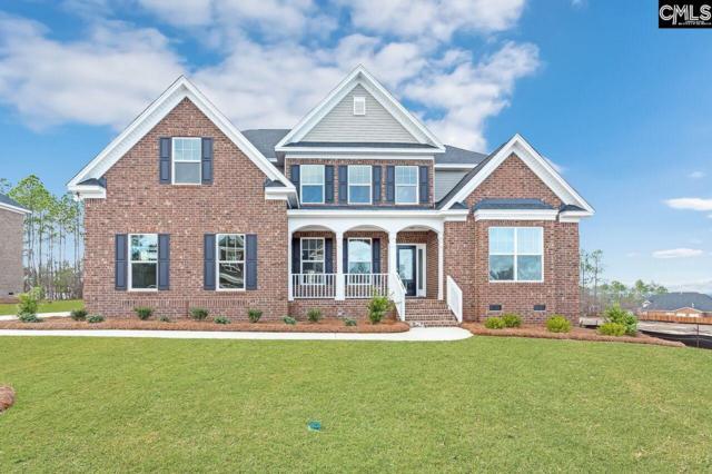328 Congaree Ridge Court, West Columbia, SC 29170 (MLS #461909) :: EXIT Real Estate Consultants