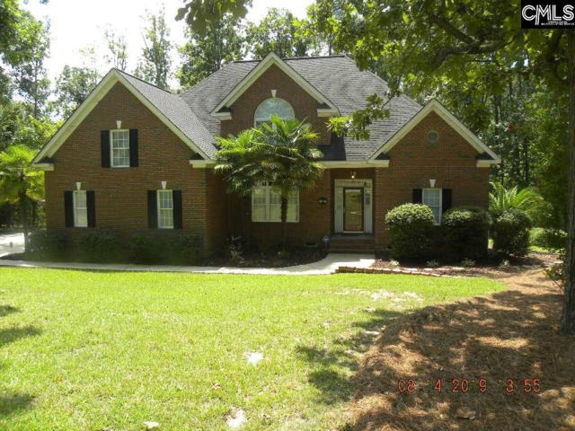 201 Lookout Pointes Drive, Chapin, SC 29036 (MLS #462701) :: EXIT Real Estate Consultants