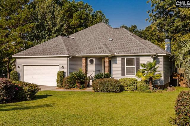 209 Headwater Circle, Irmo, SC 29063 (MLS #463975) :: EXIT Real Estate Consultants