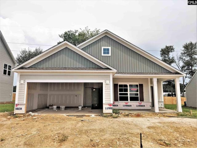 209 Elsoma Drive, Chapin, SC 29036 (MLS #464688) :: EXIT Real Estate Consultants