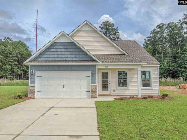 217 Elsoma Drive, Chapin, SC 29036 (MLS #464691) :: EXIT Real Estate Consultants