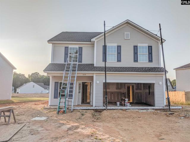 220 Elsoma Drive, Chapin, SC 29036 (MLS #465300) :: EXIT Real Estate Consultants