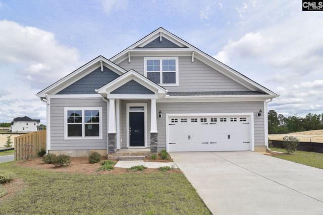 401 Orchard Grove Lane, Elgin, SC 29045 (MLS #465583) :: Loveless & Yarborough Real Estate