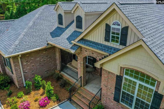 127 Brighton Ct, Lexington, SC 29072 (MLS #469620) :: EXIT Real Estate Consultants