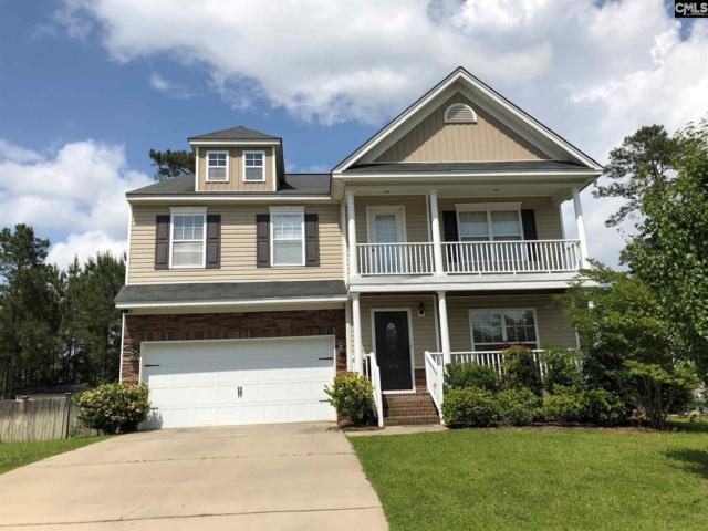416 Maypop Lane, Irmo, SC 29063 (MLS #471207) :: EXIT Real Estate Consultants