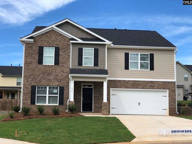 216 Village View Way, Lexington, SC 29072 (MLS #472601) :: The Olivia Cooley Group at Keller Williams Realty