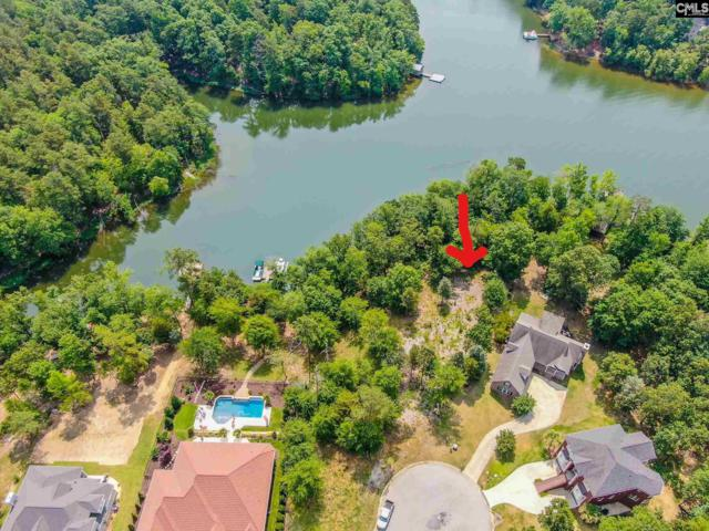 171 Summer Bay Dr, Chapin, SC 29036 (MLS #472792) :: EXIT Real Estate Consultants