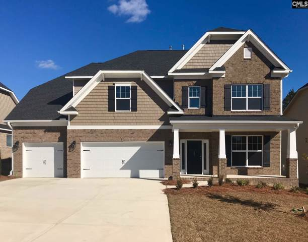 207 Chapin Brook Court, Chapin, SC 29036 (MLS #472795) :: EXIT Real Estate Consultants