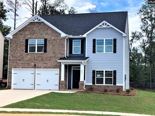 217 Village View Way, Lexington, SC 29072 (MLS #473061) :: The Olivia Cooley Group at Keller Williams Realty