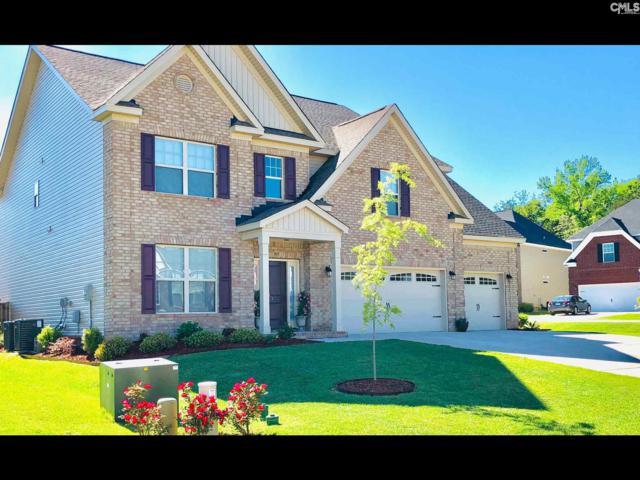 243 Pewter Drive, Lexington, SC 29072 (MLS #474188) :: Home Advantage Realty, LLC