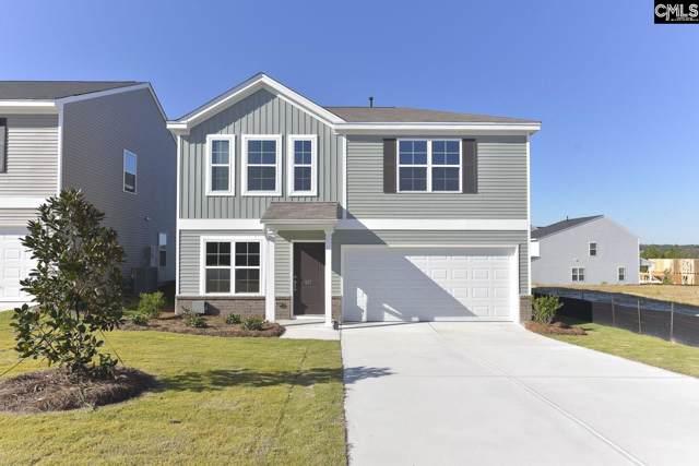 817 Tallaran Road 54, Lexington, SC 29073 (MLS #474675) :: EXIT Real Estate Consultants
