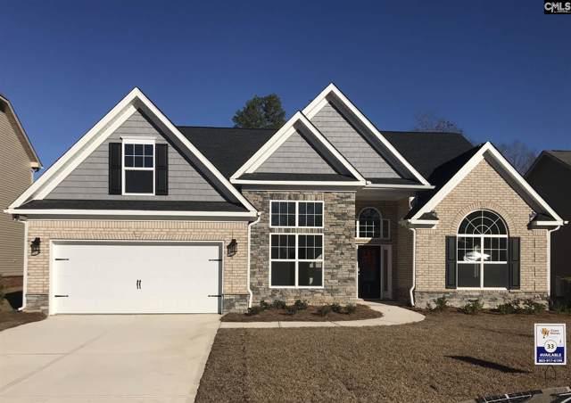 217 Chapin Brook Court, Chapin, SC 29036 (MLS #476559) :: Loveless & Yarborough Real Estate