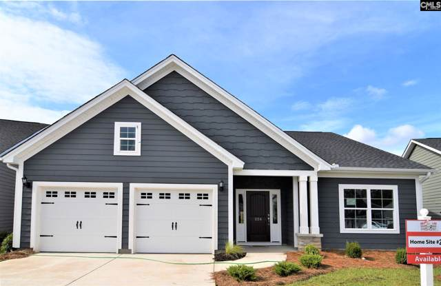 224 Matisse Trail, Chapin, SC 29036 (MLS #477185) :: Loveless & Yarborough Real Estate